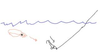 イカの絵1.jpg
